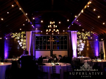 floral vine texture lighting gobo example mount ida farm